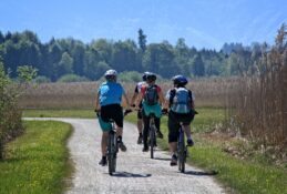 Group of cyclists riding on a bike path