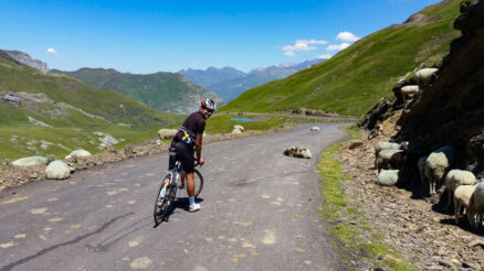 A cyclist stopped on Col de Tentes looking at sheep