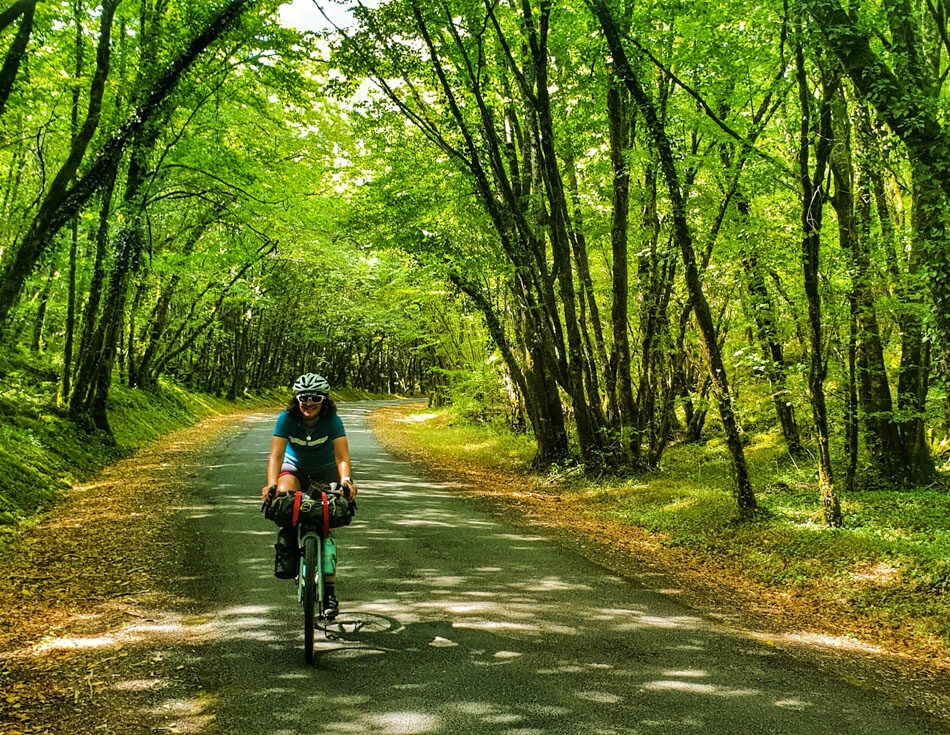 A female cyclist riding on a tree-lined road in France