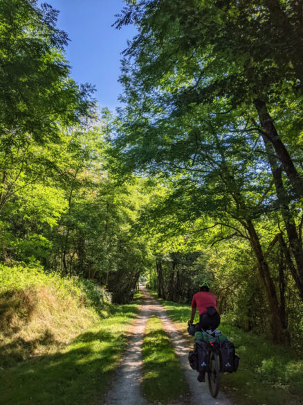 A cycle tourist on the Saint-Girons to Foix VOie Verte in the Ariege Pyrenees. The dirt trail is surrounded by forest.