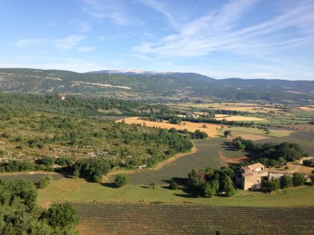 picure of farm fields in Provence with Mont Ventoux in the distance