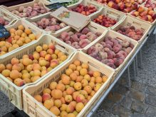 Fresh stone fruit on display at a French produce market