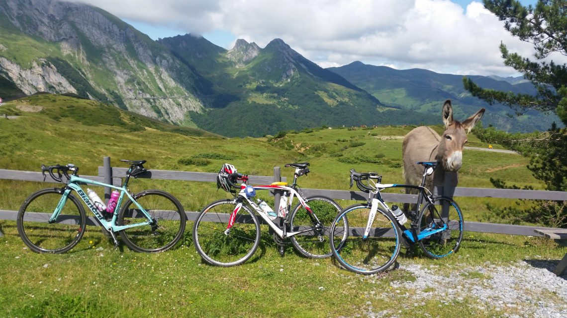 Three road bikes along a fence in the pyrenees with a donkey at the top of the Col du Soulor. The Col d'Aubisque climb in the background.