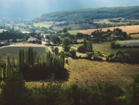 View of farm fields in Provence